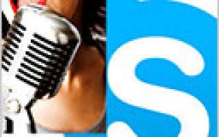 Как изменить голос в Скайпе? Программа для изменения голоса в Скайпе