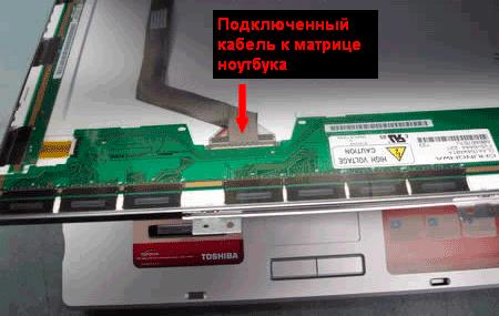 beliy-ekran-1